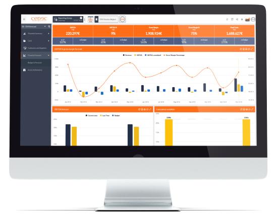 CEDEC, société de conseil en gestion stratégique, vous présente son nouvel outil d'analyse d'entreprise : CEDEC Business Intelligence